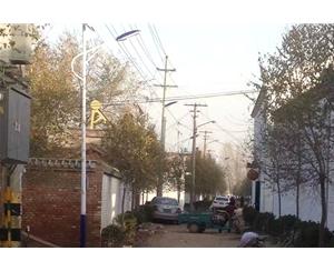 鸡泽县风筝乡新风村美丽乡村建设街道亮化工程完工 (5)